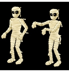 Two cute mummy on a black background vector image