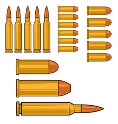 ammunition and bullets isolated on white vector image
