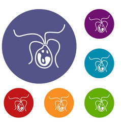 bacterial cell icons set vector image