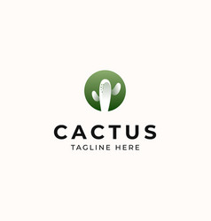 cactus modern concept logo template isolated vector image