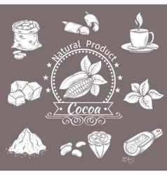 Decorative icons set cocoa vector image