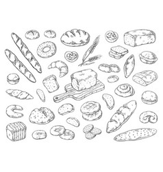 hand drawn bakery doodle bread sketch wheat vector image