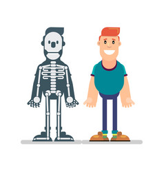man and anatomy manual vector image