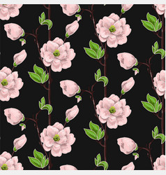Seamless spring pattern with pink magnolias vector