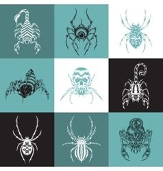 Set of labels with the image of arachnids vector image