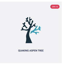 Two color quaking aspen tree icon from nature vector