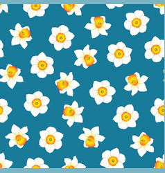 White daffodil - narcissus flower on indigo blue vector