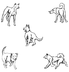 Dogs sketch pencil drawing by hand vector