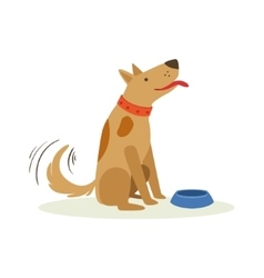 Brown Pet Dog Wating To Be Fed With Dog Food vector image