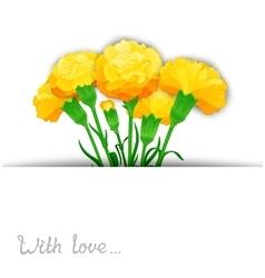 Carnation flowers design vector