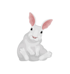 funny rabbit sitting on floor white hare with vector image