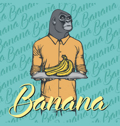 gorilla with bananas vector image