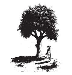 Liberty tree vintage vector