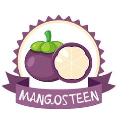 Logo design with mangosteen vector