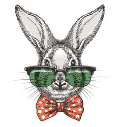 Rabbit in glasses sketch portrait vector