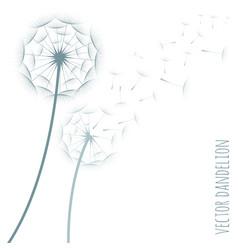 dandelion silhouette vector image