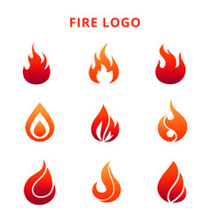 colorful flame of fire logo isolated on white vector image