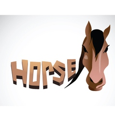 horse face color vector image vector image