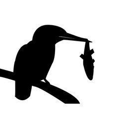 Black and white kingfisher shadow on a branch vector
