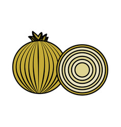 Fresh onion with slice organ vegetable food vector