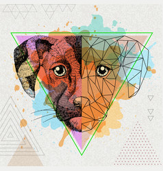 Hipster animal realistic and polygonal dog on vector