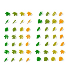 Icons yellow leaves vector