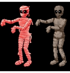 Pink mummy and stone one on a black background vector image