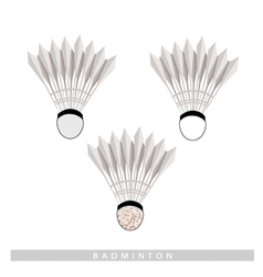 Set of Shuttlecock on A White Background vector image