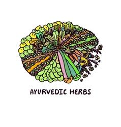 Zentangle element Ayurvedic herbs vector