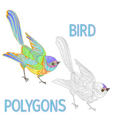 rainbow bird polygons coloured and outline vector image