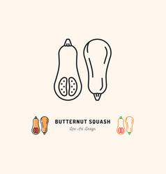 Butternut squash icon vegetables logo thin line vector