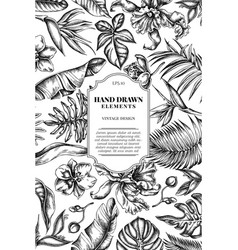 Card design with black and white monstera banana vector