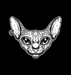 head sphynx cat breed in vintage monochrome vector image