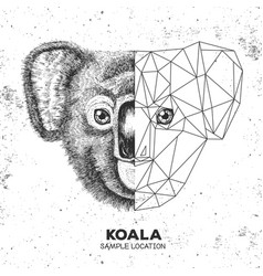 Hipster animal realistic and polygonal koala face vector
