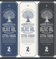 labels for olive oil with an olive tree vector image