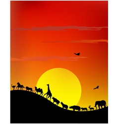 Silhouette of wildlife safari vector