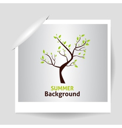 Summer Photo Frame Green tree vector image