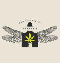 Banner for legalize marijuana with faceless person vector