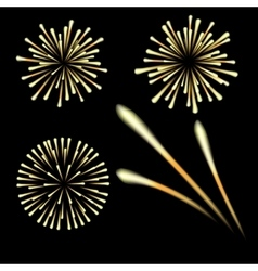 Bright fireworks in honor feast on a black vector