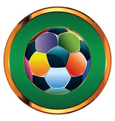 Colorful Soccer Ball2 vector