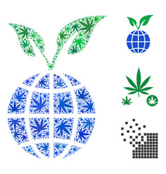 Global sprout collage of marijuana vector