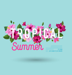 hello summer poster floral design with hibiscus vector image