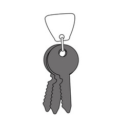 keys icon design vector image