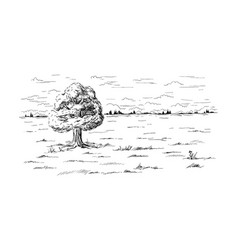 Lonely tree standing in the middle of the field vector