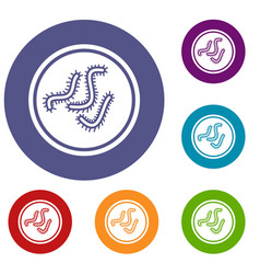 Lot of bacteria icons set vector