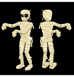 Two cute mummy with hands on a black background vector