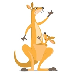 Two funny kangaroos vector