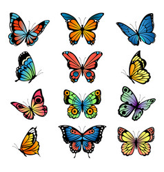 various cartoon butterflies set vector image