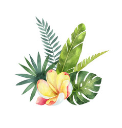 Watercolor bouquet tropical leaves and vector