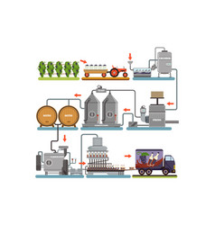 wine production process production beverage from vector image